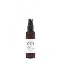 BALTIC mgiełka do ciała i włosów mango fit 90ML